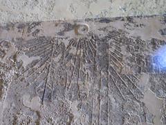 Aten, Tomb of Penthu, Amarna (Aidan McRae Thomson) Tags: amarna tomb egypt ancient egyptian