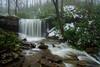 Cole Run Falls (clare j kaczmarek) Tags: forbesstateforest colerunfalls waterfalls rhododendron