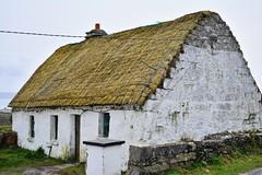 DSC_8507 (seustace2003) Tags: gaillimh galway ierland ireland irlanda inis oírr aran islands gaeltacht
