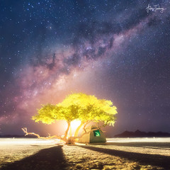 A short story about the Universe, the Moon and a small tent under the tree somewhere on planet Earth (Namibia, Sossusvlei) (Anton Jankovoy (www.jankovoy.com)) Tags: tent tree moon moonrise universe milkyway light desert namibia namib camp shadows stars night nightscape silhouette sossusvlei