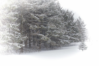 More April Snow