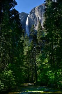 Yosemite Falls II