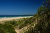 From the dunes (jack eastlake) Tags: polarizer polariser breakthrough habitat birds endangered protection environment sand dunes beaches wild nsw coast south far bermagui beach barragoot wildbeachaus cuttagee