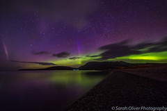 Oh wow I got what I came for....  including STEVE (Strong Thermal Emission Velocity Enhancement) (sarahOphoto) Tags: ardmair scotland unitedkingdom gb aurora northern lights show spectacular colours sky night astro ullapool scottish highlands long exposure canon 6d samyang dancing green clouds mountains water reflection landscape nature borealis stars purple beach