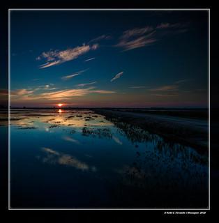 Alba a la marjal de Sollana 35 (Sollana's marsh in sunrise 35) Sollana, la Ribera Baixa, València, Spain