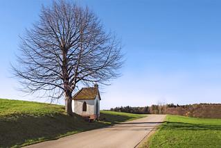 At the roadside -