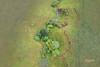 20180331-DJI_0539-Edit20180331.jpg (Phil Copp) Tags: above drone dji aerials rollinghills green hills aerialphotography mavicpro athertontablelands