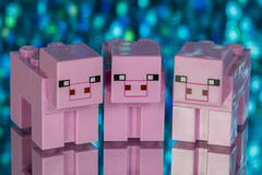 Three little pigs (jeff's pixels) Tags: onceuponatime macromondays macro pig lego minecraft reflection cute animal toy nikon d850