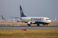 Ryanair - Boeing 737-8AS/W EI-FZD @ Frankfurt Main (Shaun Grist) Tags: eifzd fr ryanair boeing 737 shaungrist fra eddf frankfurt germany airport aircraft aviation aeroplanes airline avgeek