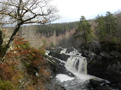 Rogie Falls, near Garve, March 2018 (allanmaciver) Tags: rogie falls garve scotland highlands trees water spray noise black rock allanmaciver
