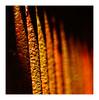 rouille en barres (Marie Hacene) Tags: rouille cimetière orange matières paris textures