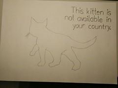 404 - This kitten is not available in your country. (waithamai) Tags: 404 notfound notavailable kitten cat catcontent error htmlerror errorcats error404