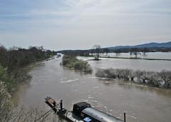 Spring Floods near Worcester (Tudor Barlow) Tags: worcester worcestershire england rivers riversevern spring floods canonpowershotsx620hs