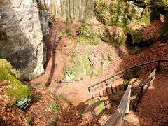 Spaziergang durch die Teufelsschlucht (Antje_Neufing) Tags: teufelsschlucht irrel eifel wandern buche blätter wald rheinlandpfalz deutschland felsen