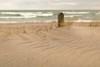waves (Marc McDermott) Tags: beach sand waves dunes grass shore lakeontario lakeshore canada ontario wind windswept