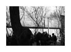(billbostonmass) Tags: adox silvermax 100 film 129silvermax1100min68f fm2n 40mm ultron sl2 epson v800 boston massachusetts chinatown chess