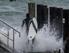 Surfin' the Baltic Way (katrin glaesmann) Tags: timmendorferstrand ostsee schleswigholstein balticsea bayoflübeck lübeckerbucht sleswickholsatia derechtenorden therealnorth waves spray surfer surfboard wellenreiter storm sealskin neo