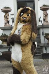 _DSC0023 (MM Furry Photo) Tags: bunny rabbit fursuit fursuiting portrait critterfactory pantoffel