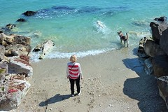 Enjoying a swim (N I C K ....1 8 2 8) Tags: dog cane mare moving woman wave onde donna sea sole sun spiaggia blu beach nick 1828