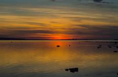 Sunset (frankmh) Tags: sunset öresund hittarp helsingborg sweden denmark