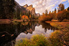 At Merced River Banks (Luc Stadnik) Tags: yosemite california fall fallcolors reflection river usa nationalparks gondenhour