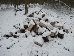 R1039758 (Stitchinscience) Tags: snow oxfordshire pile wood woodpile