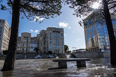 Montpellier under water (Carandoom) Tags: 2018 snow water montpellier sun river building city tree clouds