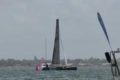 LOX_3855 (Lox Pix) Tags: australia queensland brisbanetogladstone yachtrace catamaran trimaran 2018 bossracing multihull loxpix moretonbay shorncliffe cabbagetreecreek rudder aground sailing loxworx