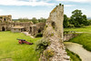 Pevensey Castle (Keith in Exeter) Tags: castle pevensey wall grass field gun cannon tree water moat landscape sussex eastsussex ruins architecture tower