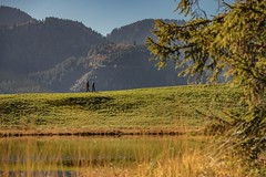 Les Paccots / Ref.ST052 (FRIBOURG REGION) Tags: chatelsaintdenis fribourg switzerland ch schweiz suisse fribourgregion fribourgrégion lespaccots herbst automne autumn lac see lake lacdesjoncs eau wasser water outdoor nature natur