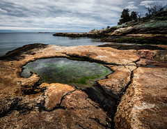 Rocky Neck Tide Pool (Simmie | Reagor - Simmulated.com) Tags: 2018 connecticut connecticutphotographer landscape landscapephotography longislandsound march nature naturephotography newengland niantic outdoors rocky rockyneckstatepark shoreline spring stormy unitedstates cloudy ctvisit digital wwwsimmulatedcom eastlyme us