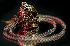 Skull Pendant 108/365 (stevemolder) Tags: skull gold red pendant canon strobist westcott jewlery