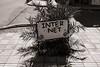 Inter Net (Tom Levold (www.levold.de/photosphere)) Tags: fuji fujix100f marokko morocco x100f zagora street sw bw palme schild sign palm