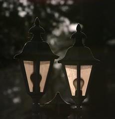 Licht an? (D. W.) Tags: lampe laterne licht gegenlicht stilleben stillleben light morbid charme