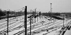 """""""N'allez pas là où le chemin peut mener. Allez là où il n'y a pas de chemin et laissez une trace."""" (William Blake)  -  EXPLORE (Philippe Haumesser Photographies (+ 5000 000 views) Tags: train rail railway chemindefer neige snow hiver winter nikond7000 nikon d7000 reflex colmar alsace elsass france hautrhin 68 noiretblanc blackandwhite monochrome"""
