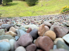 DSC02331 (classroomcamera) Tags: outside outdoor outdoors rock rocky rocks pebble pebbles ground floor floors grounds closeup abstract foreground background surface bumpy bump bumps grass green stone stony cool cold rough