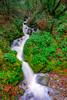 DSCF6301.jpg (RHMImages) Tags: xt2 landscape storm river southyuba water fuji waterfall southyubariver nevadacity fujifilm nevadacounty