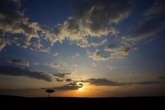 Masai Mara Kenia (WOfoto) Tags: nikon d7200 sigma1750mmf28 landscape sunset nature natuur landschap kenia masai mara travel sun clouds