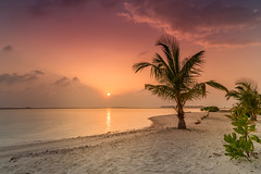 A9909709_s (AndiP66) Tags: strand beach sonne sun sonnenuntergang sunset wolken clouds evening abend adaaran select meedhupparu raa atoll insel island malediven maldives indischerozean indianocean februar february 2018 sony alpha sonyalpha 99markii 99ii 99m2 a99ii ilca99m2 slta99ii tamron tamronsp1530mmf28diusd tamron1530mm 1530mm f28 amount andreaspeters