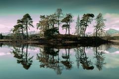 Loch Tulla (Dom Haughton) Tags: loch lochtulla tulla trees tree highland highlands canoneos70d canon caledonia scotland scottishhighlands landscapephotography landscape britain uk greatbritain greenscene serene silence reflection outdoor mountain snowymountains
