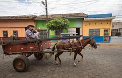 2W0A1481.jpg (Johanna Barton) Tags: leon nicaragua people león departamentodeleón ni