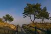 beach  access - Strandzugang (ralfkai41) Tags: bäume path sand ostsee meer strand nature heringsdorf weg beach usedom trees balticsea natur sea