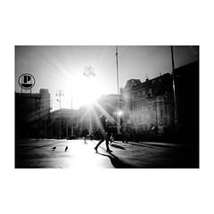 zagreb (s_inagaki) Tags: bw zagreb 散歩 blackandwhite オールドレンズ oldlens industar69 monochrome vintagelens ザグレブ bnw スナップ モノクロ 朝 白黒 morning クロアチア snap croatia walking