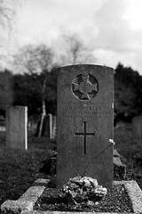 CWGC Rifleman R V Woolley The Queen's Westminsters (IanAWood) Tags: bringoutyourdead citiesofthedead graveyards harrowwealdcemetery headstonehunting lbofharrow londoncemeteries londondead nikkorafs58mmf14g nikondf stanmore uxbridgeroad walkingwithmynikon