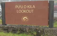 Hawaii USA - Kauai Island. Pu`u Hinahina Lookout (Feridun F. Alkaya) Tags: puuhinahinalookout hawaii waimeacanyonstatepark waimea waimeacanyon hawaiiisland ngc landscape canyon road forest kauaı kauaiisland aloha
