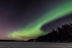 Friday night (Arttu Uusitalo) Tags: aurora borealis auroras night nightscape winter spring northern lights ostrobothnia wideangle canon eos 5d mkiv landscape finland sky
