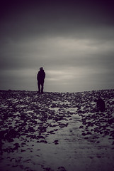 One man and my dog. (Livesurfcams) Tags: slipway devon nikonv1 185mm explore explored westwardhowinter lonefigure dog snow sky steps moody mono grit