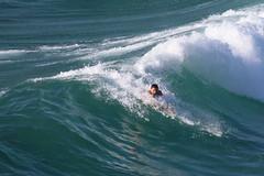 2018.03.18.08.33.08-Lime-green handplane-005 (www.davidmolloyphotography.com) Tags: bodysurf bodysurfer bodysurfing surf beach surfing surfer tamarama