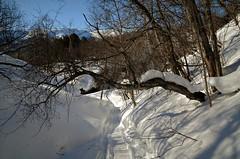 snøskutervei (KvikneFoto) Tags: vinter winter snø snow landskap natur norge hedmark kvikne tamron nikon