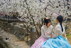 Togetherness (Suri Singh) Tags: korean togetherness lgbtq gay lesbian streetlove love traditionaldress